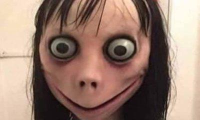 Momo suicide